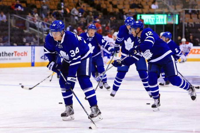 Toronto Maple Leafs 2018-19